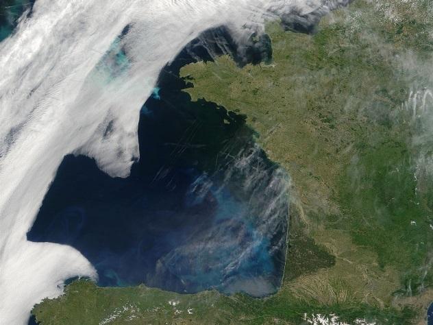 ВИндийском океане найдена новая «мертвая зона»