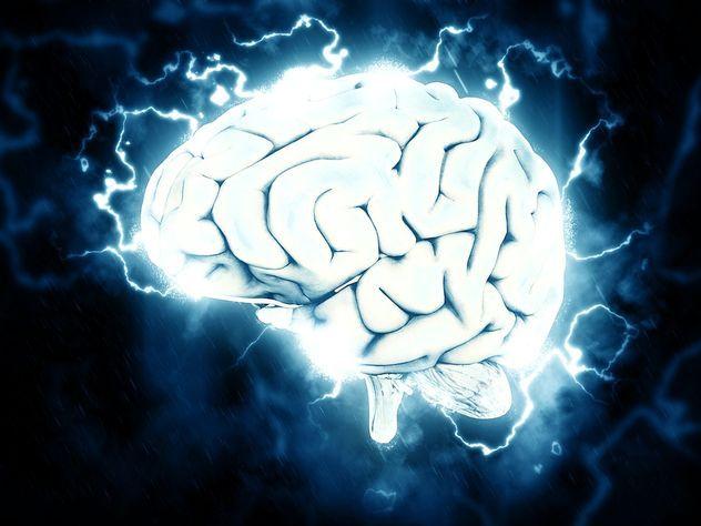 Ученые объяснили, как мозг не дает похудеть