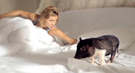 Кристина и поросёнок во время съёмок клипа