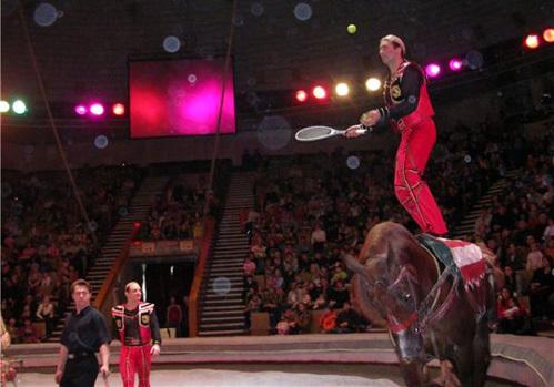Братья ЗАПАШНЫЕ попали в Книгу рекордов Гинесса за трюк на лошадях