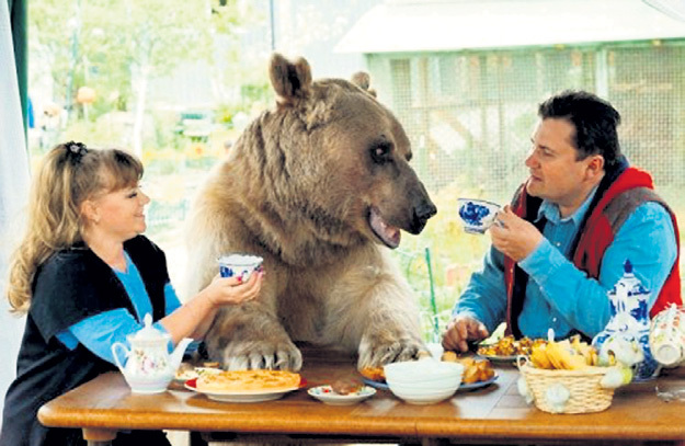 Любимый питомец на семейном чаепитии... Фото: Twitter.com