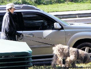 Единственная радость Светланы Николаевны на склоне лет - её собаки