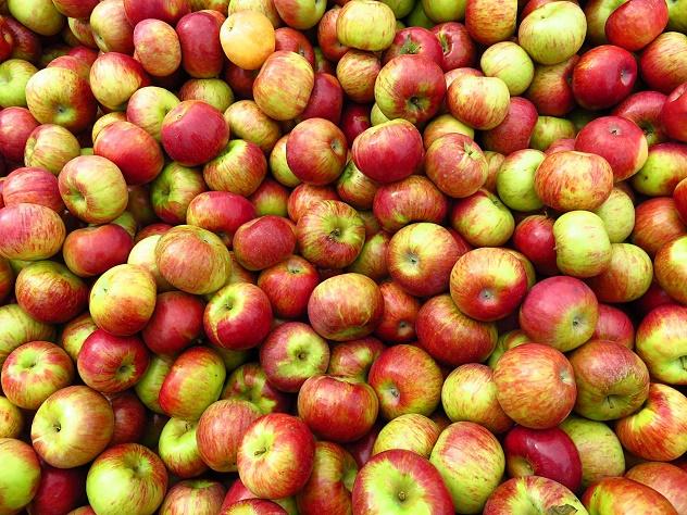 Россельхознадзор вводит ограничения наввоз яблок изБоснии иГерцеговины