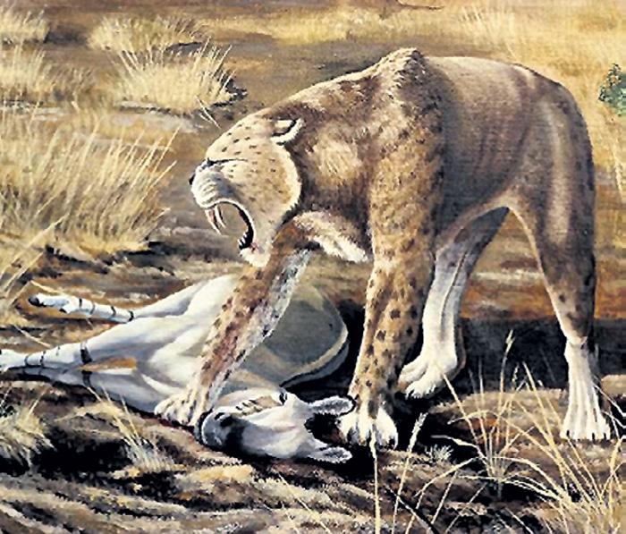 Древние гиены были размером с современного тигра